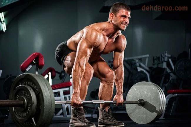 پروتئین و تاثیر آن در بدنسازی