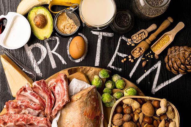 عملکرد پروتئین در بدنسازی